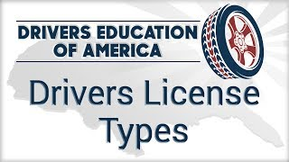 Download Driver License Types Video