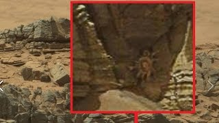 Download NASA spots 'Alien facehugger' on Mars; UFO photo tweeted by astronaut - aliens and UFOs compilation Video