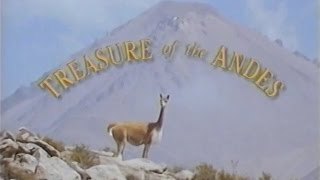 Download Treasure of the Andes (1993) Video