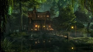 Download Swamp Sounds at Night - Frogs, Owls, Crickets, Light Rain, Forest Nature Sounds | 3 Hours Video