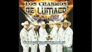 Download Rio Maipo El Carrito Te Traigo Estas Flores Los Charros De Lumaco Gracias Chile Video