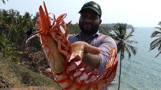 Download Big Shrimp Fishing | Prawns Fishing | Prawns Catching Videos street food Video