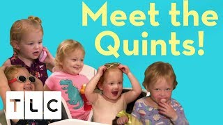 Download Meet the Quints! | Season 3 | Outdaughtered Video