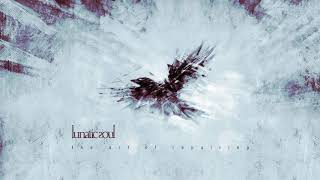 Download Lunatic Soul - The Art of Repairing (from Under the Fragmented Sky) Video