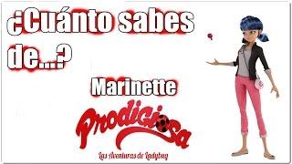Download ¿Cuánto sabes de Marinette? - TEST Video