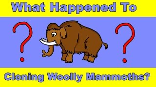 Download Why Haven't We Cloned a Woolly Mammoth Yet? Video
