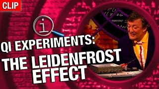Download QI   The Leidenfrost Effect Video