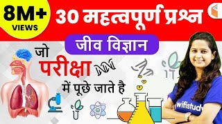 Download 12:00 PM - Group D Crash Course | GS by Shipra Ma'am | Day#07 | Human Body System Part 2 Video