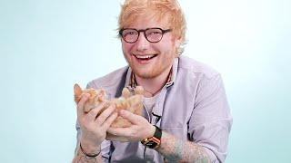 Download Ed Sheeran Plays With Kittens While Answering Fan Questions Video