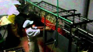 Download Planta de Sacrificio avicola Video