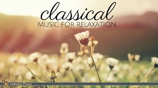Download Classical Music for Relaxation Video