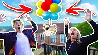 Download FLYING MY DOG WITH BALLOONS EXPERIMENT!! **FLEW AWAY** Video