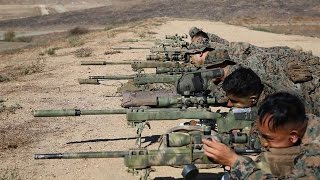 Download Marine Sniper Training - The First 2 Weeks of USMC Scout Sniper Training Video