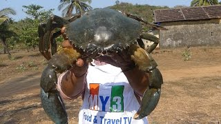 Download WORLD'S BIGGEST CRAB | MAKING GRILLED CRAB | FOOD FACTORY Video