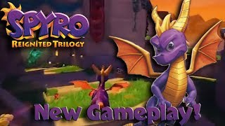 Download NEW SPYRO FOOTAGE - Town Square, Peace Keepers and Stone Hill! Video