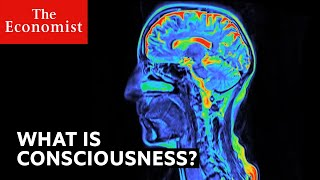 Download What is consciousness? Video