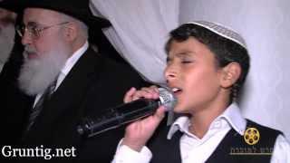 Download Uziya Tzadok Sings Kochav Meir Live At Chuppah Video