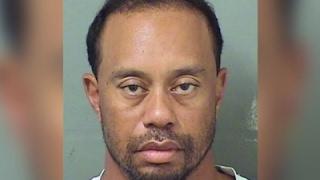 Download Tiger Woods Arrested in Florida for DUI Video