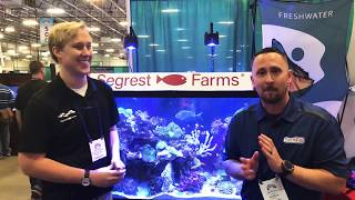 Download STOP don't do that, Make your fish tank your passion! |Segrest Farms Video