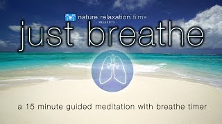 Download 15 Minute Guided Meditation w Breath Assistance | 4K UHD ″Just Breathe″ by Nature Relaxation™ Video