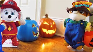 Download Paw Patrol Baby Pup Halloween Toy Learning Video for Kids! Video