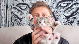 Download Girlfriend Kitten Surprise! Video