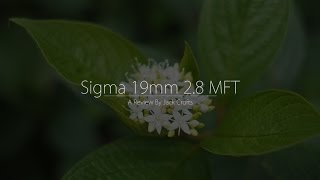 Download Sigma 19mm 2.8 Art Lens (Review By Jack Crofts) Video