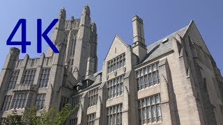 Download A 4K Tour of Yale University Video