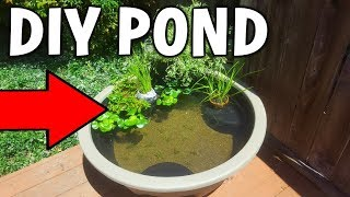 Download Cheap DIY BACKYARD MINI Pond! Video