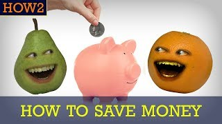 Download HOW2 How to Save Your Money Video