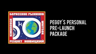 Download Peggy's Personal Pre-Launch Package Video