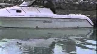 Download Glacier Bay 2680 Alaska Adventure Video