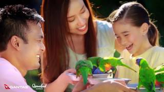 Download Experience Brisbane with Qantas 2017 Video