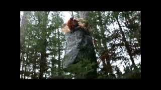 Download Sara Shoots a Deer, Deer Camp 2012 Video