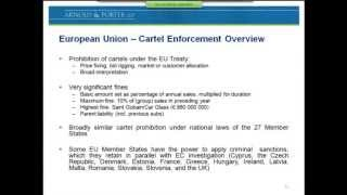 Download US And EU Cartel Investigations Stage 1: Amnesty Leniency Strategy Video