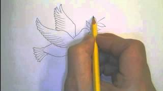 Download Drawing Children Into PEACE - ″Dove with an olive branch″ Video