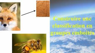 Download Construire une classification en groupes emboités Video