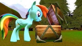 Download Cursed Pony Magic: Rainbow Dash Video