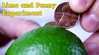 Download Lime and Penny Experiment Video
