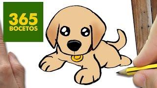 Download COMO DIBUJAR UN PERRO LABRADOR PASO A PASO: Os enseñamos a dibujar un perro fácil para niños Video