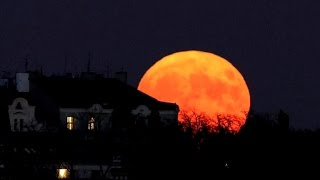 Download Largest supermoon since 1948 lights up the sky Video