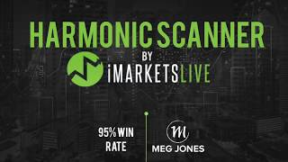 Download IML Harmonic Scanner for Beginners - By Meg Jones Video