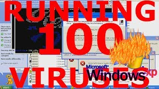Download What happens if you run 100 viruses on Windows XP? Video