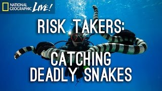 Download Risk Takers: Catching Deadly Snakes | Nat Geo Live Video