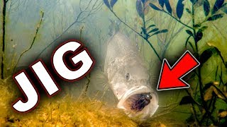 Download Underwater Bass Strikes!!! Jigs and Swimbaits - Crazy Footage!!! Video