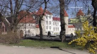Download Tallinn Video