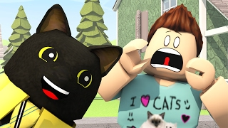 Download SIR MEOWS A LOT ANIMATED! (Roblox Animation) Video