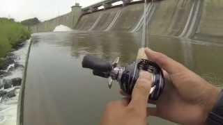 Download Saugeye and Buffalo Carp Fishing at Hoover Dam Video