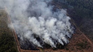 Download Bolsanaro says Brazil lacks the resources to fight record number of Amazon fires Video