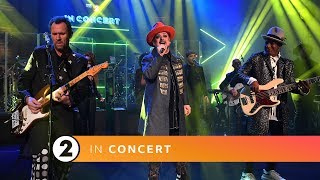 Download Boy George & Culture Club - Church Of The Poison Mind / Wham's I'm Your Man (Radio 2 In Concert) Video